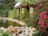 Garden pond, Basunti