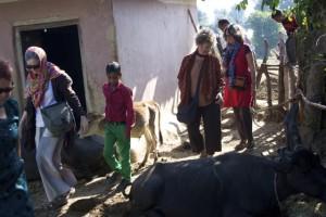 Arriving at Lalwana Village