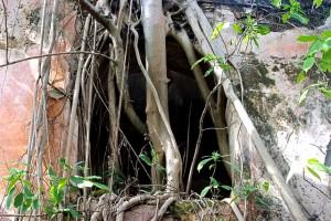 Access to underground chambers.